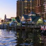 Dolphin Boat Tour, Destin Harbor, Florida