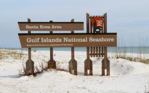 Gulf Islands National Seashore Midlife Snowbird